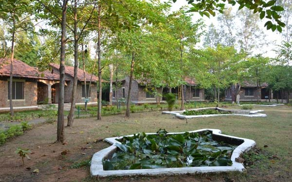 Mogli Resort in Bandhavgarh