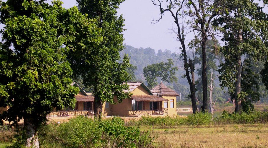 Tiger Lagoon in Bandhavgarh