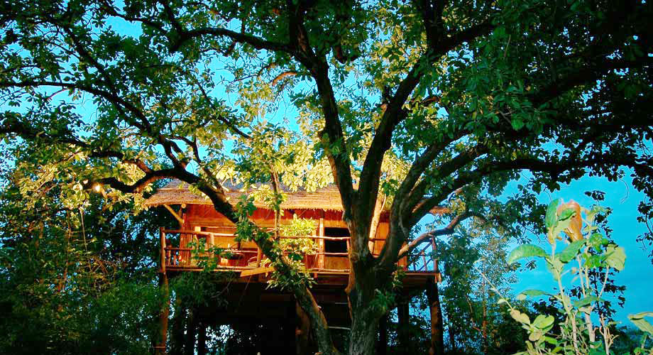 Tree House Hideaway Badhavgarh