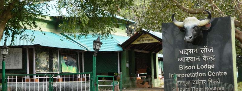 Bison Lodge and Museum in Pachmarhi