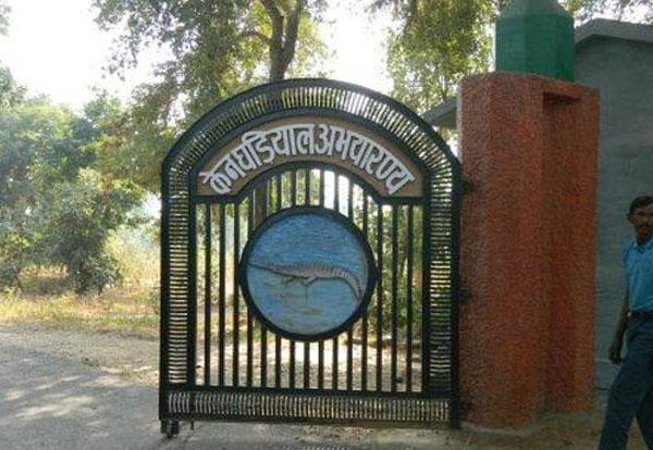 Ken Gharial Sanctuary Khajuraho