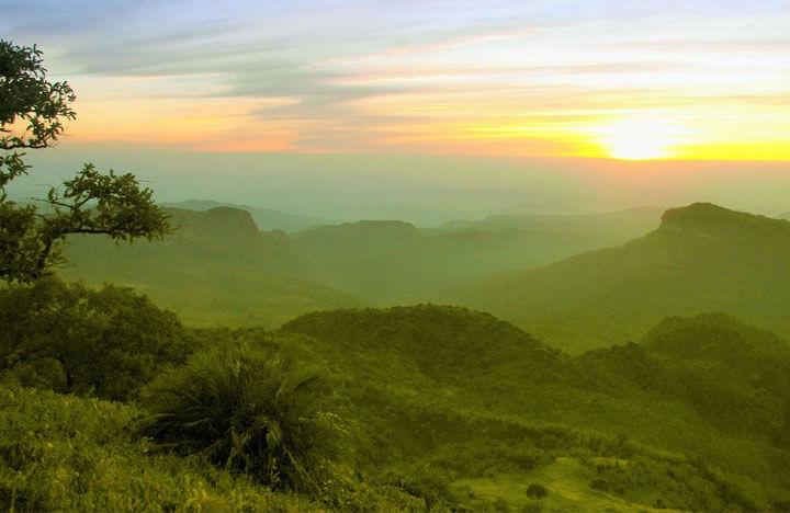 Madhai and Satpura National Park