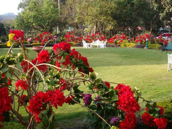 Golf View Pachmarhi