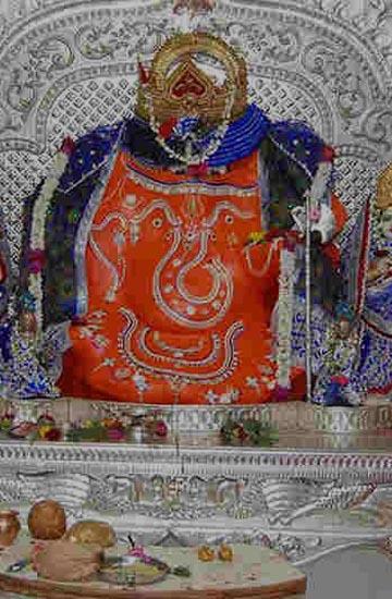wildlife tour packages of madhya pradesh