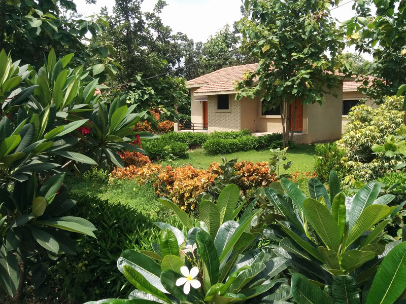 Olive Resorts & Villas Pench