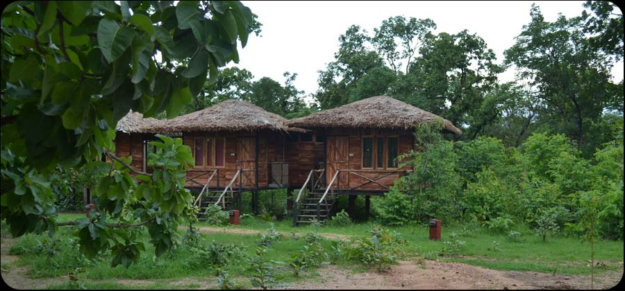 Tribal Camp Pench